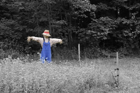 scarecrow-670720_1920